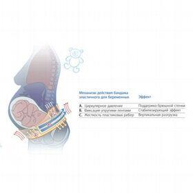 Бандаж П-0307 до- и послеродовый фото 2